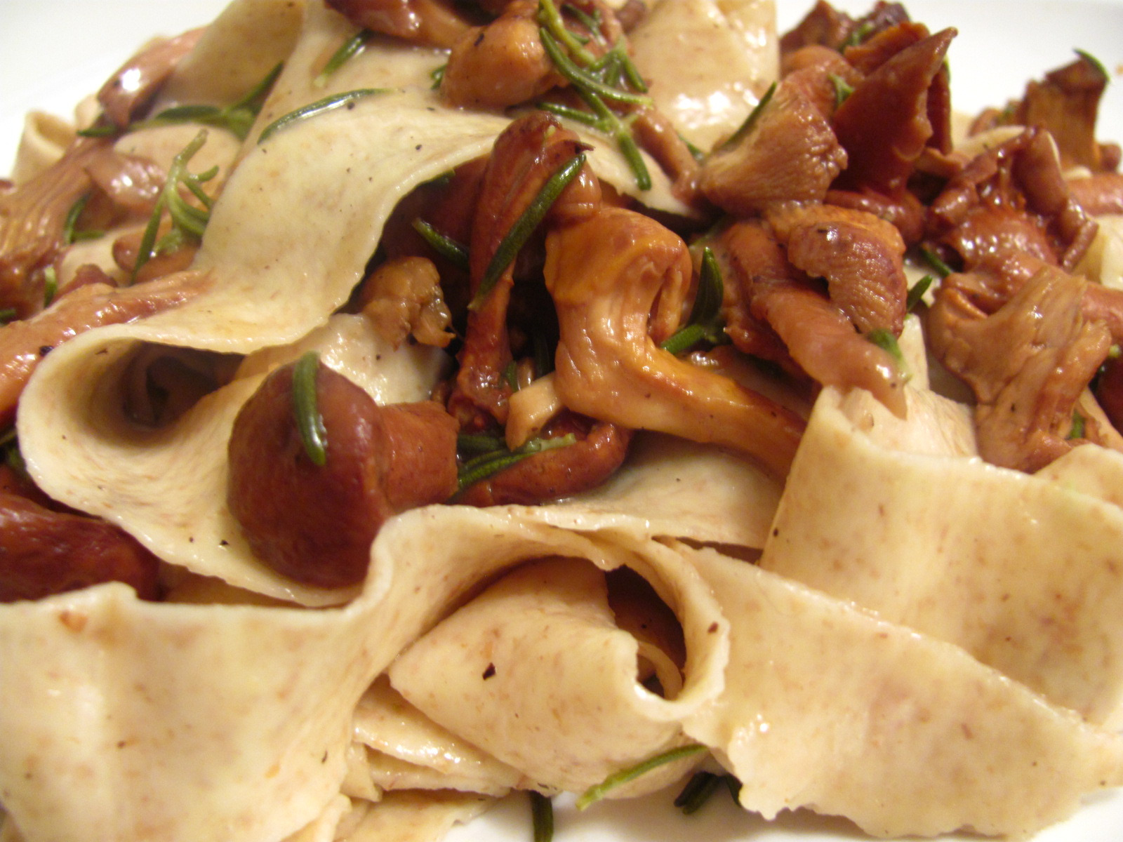 Chanterelles with Rosemary: A Foraged Feast