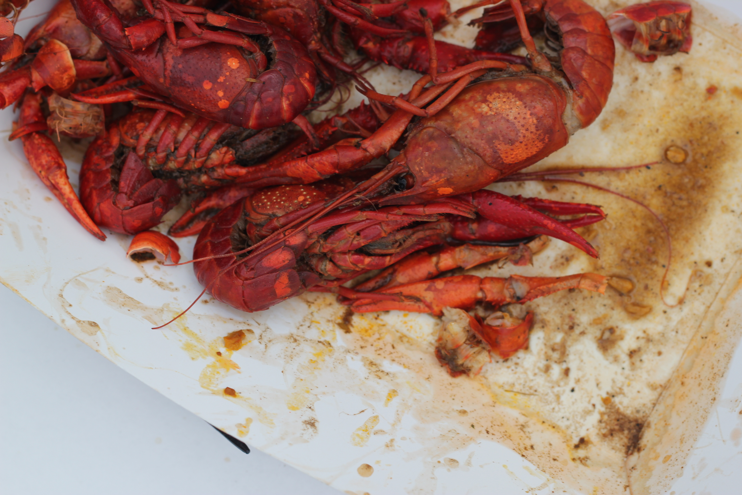 Veni, Vedi, Vici…Crawfish: 5 tips for your next Crawfish Boil